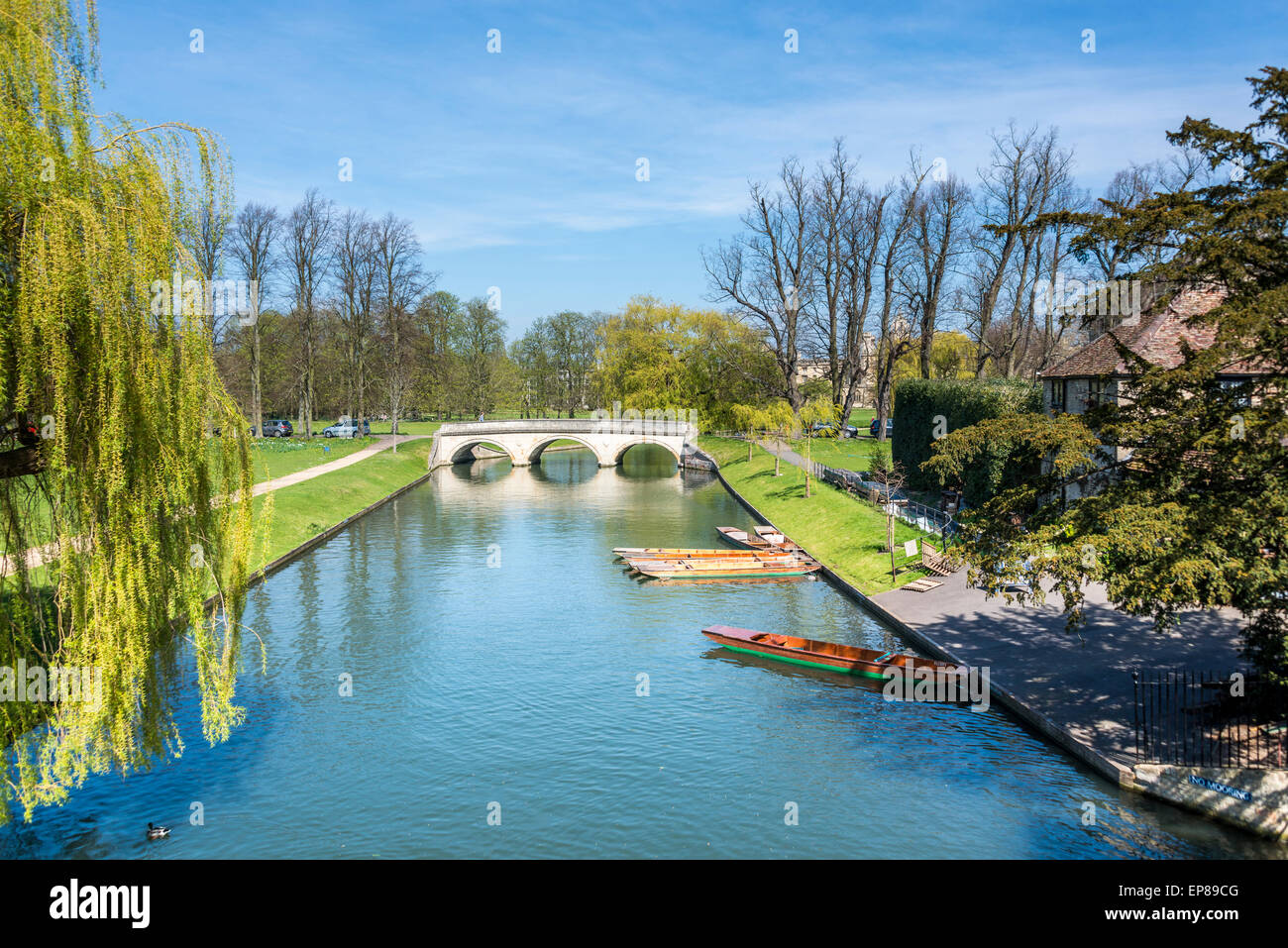 Views down the River Cam, Cambridge on a summer's day with punts on the side of the river - Stock Image