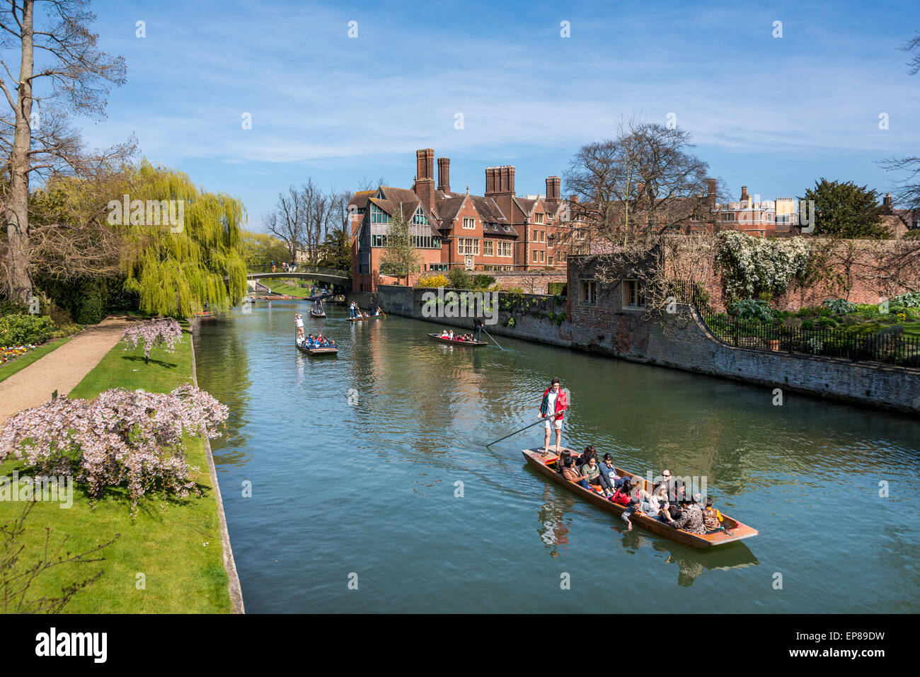 Punting On The River Cam In Cambridge England Takes Famous Backs Here