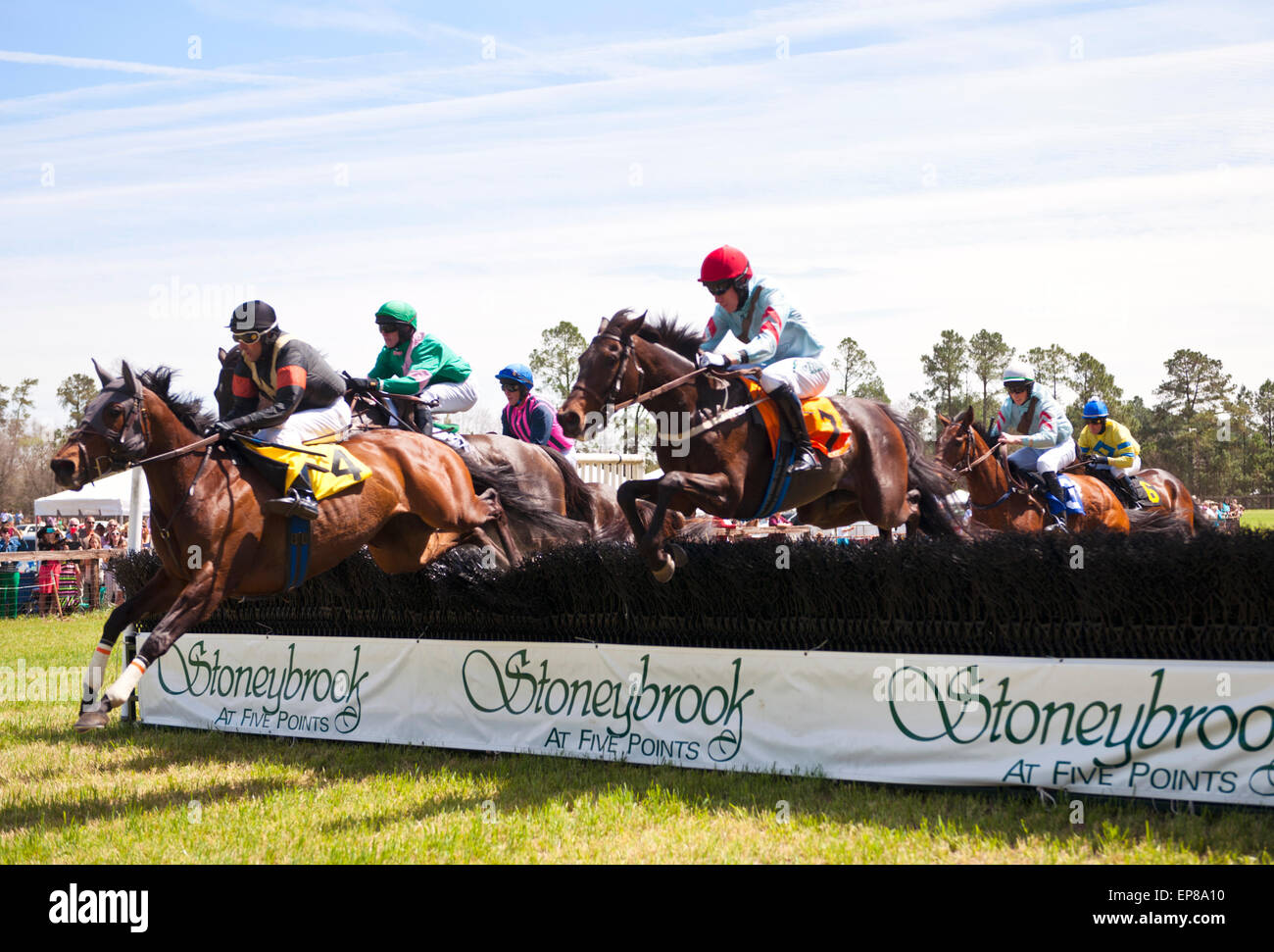 The 64th Running of the Stoneybrook Steeplechase Races, horses and jockeys hit the backstretch hurdles. - Stock Image