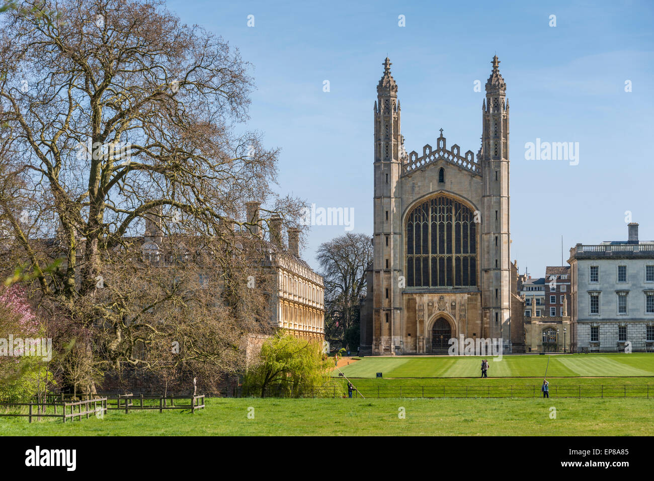 The Chapel of King's College, Cambridge University viewed from The Backs, being the back of the colleges. - Stock Image