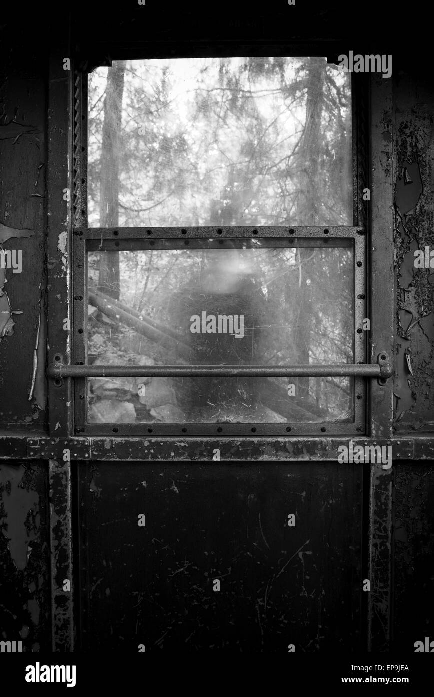 Figure of a person behind the glass of a train window - Stock Image