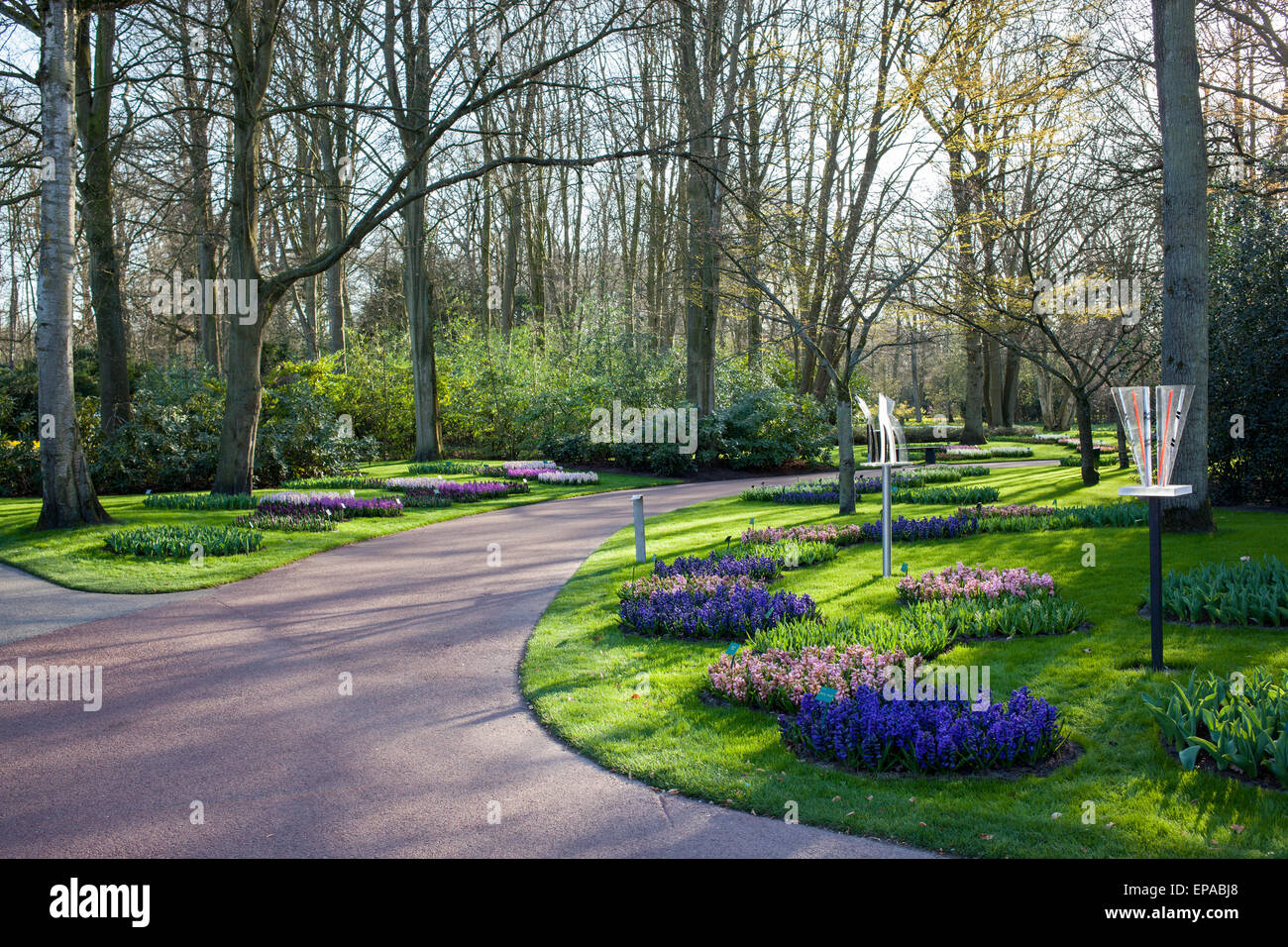 Famous flowers park Keukenhof in Netherlands also known as the Garden of Europe, is the world's largest flower - Stock Image
