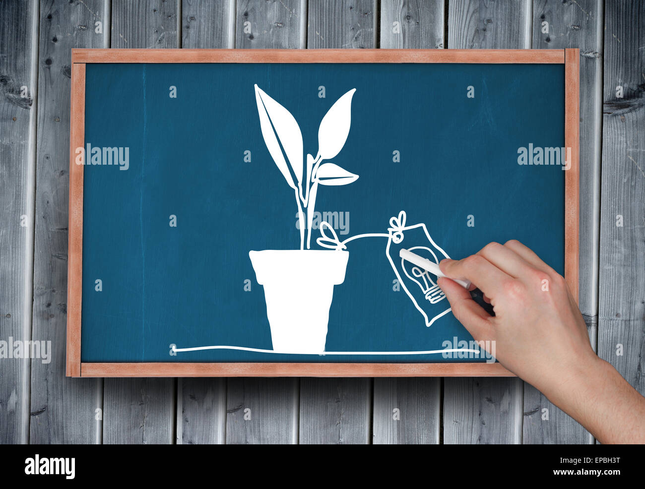 Composite image of hand drawing plant with chalk - Stock Image