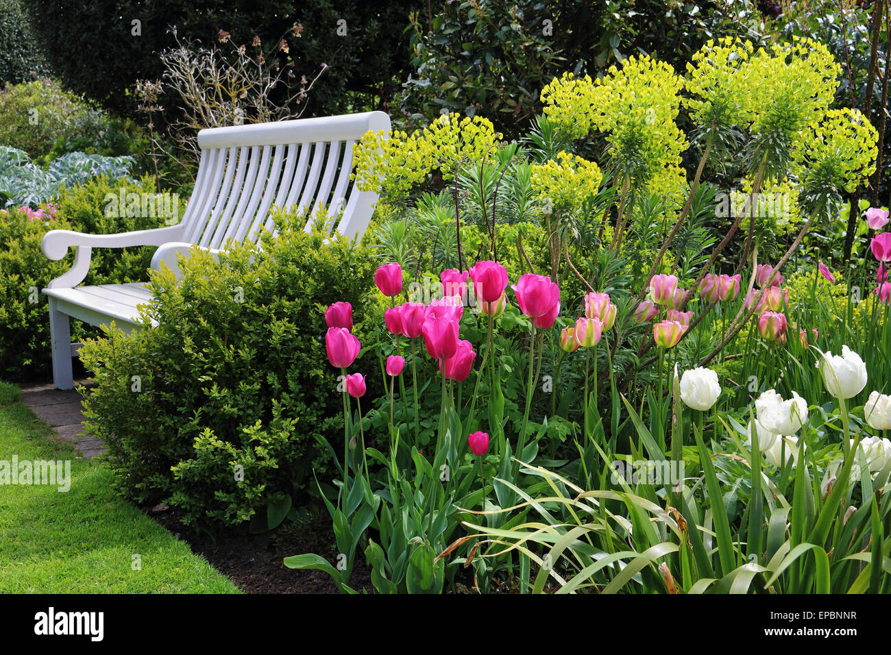 Bench Seat In An English Garden With Shrubs Plants And Colourful