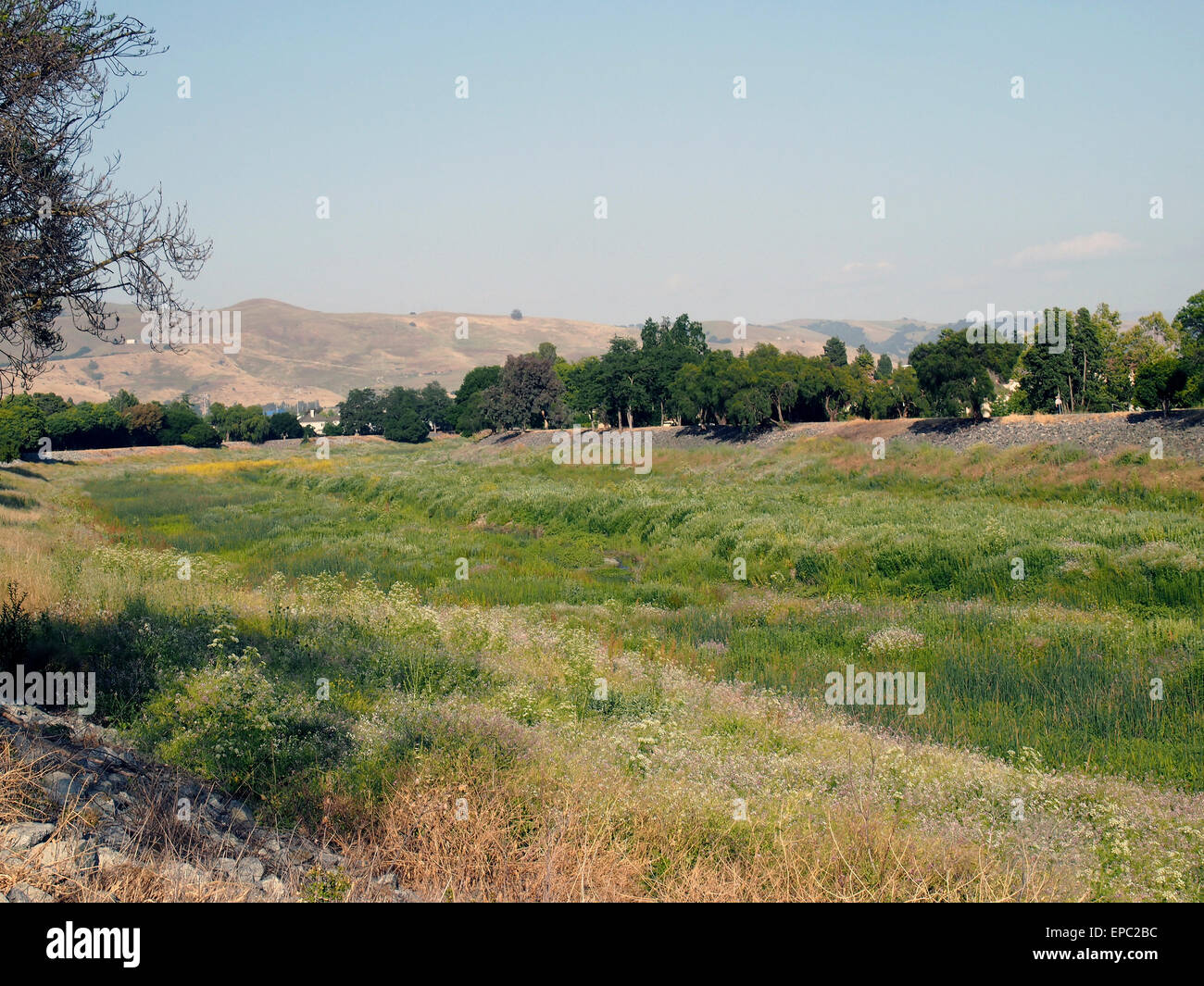 Alameda Creek, East Bay Regional Park District, Union City, California, USA - Stock Image