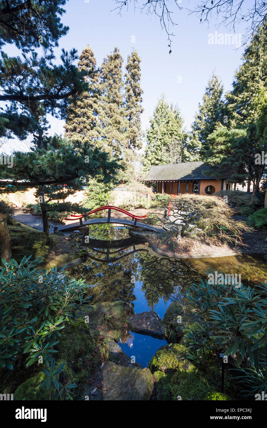 pavilion and bridge over the pond in the oriental garden of park and tilford gardens north vancouver british columbia canada - Oriental Garden