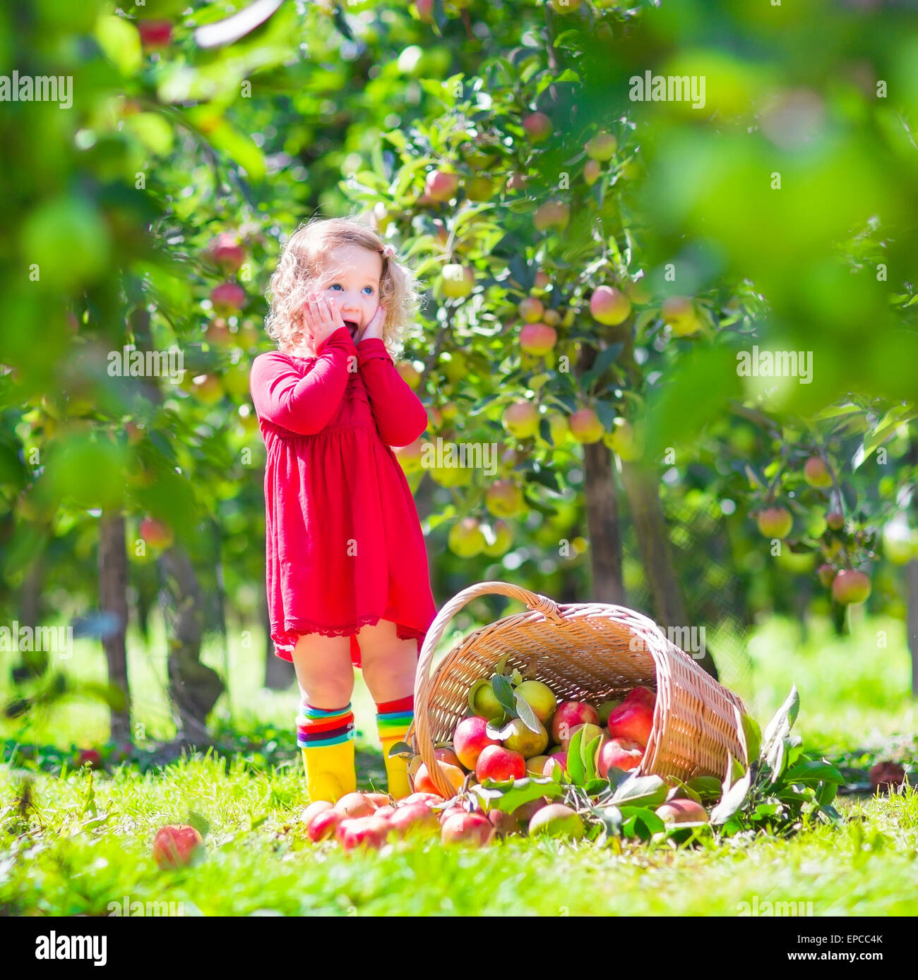 d71c28ca7d0 Adorable little toddler girl with curly hair wearing a red dress ...