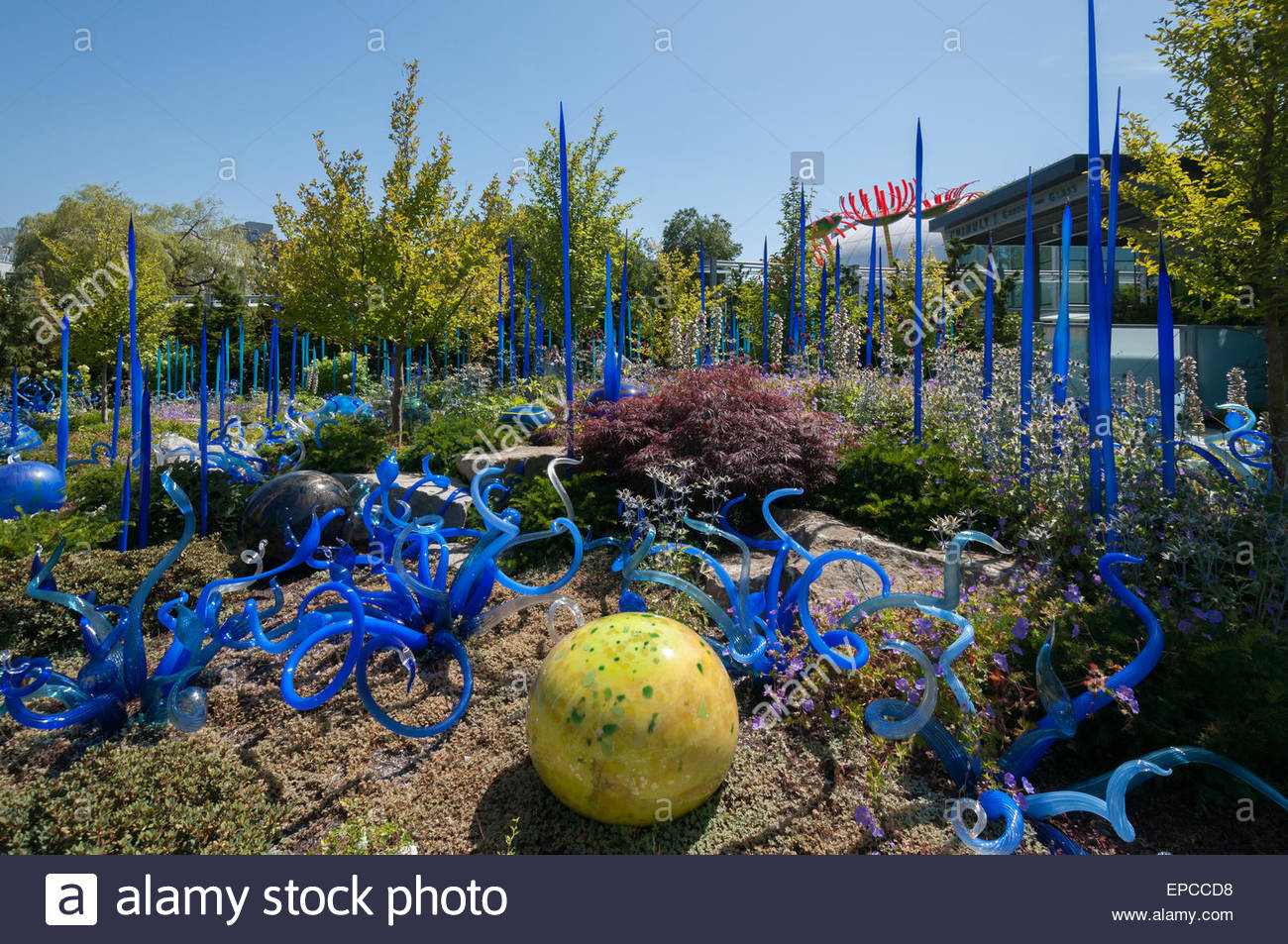 chihuly garden and glass museum seattle washington usa stock image - Glass Garden Seattle