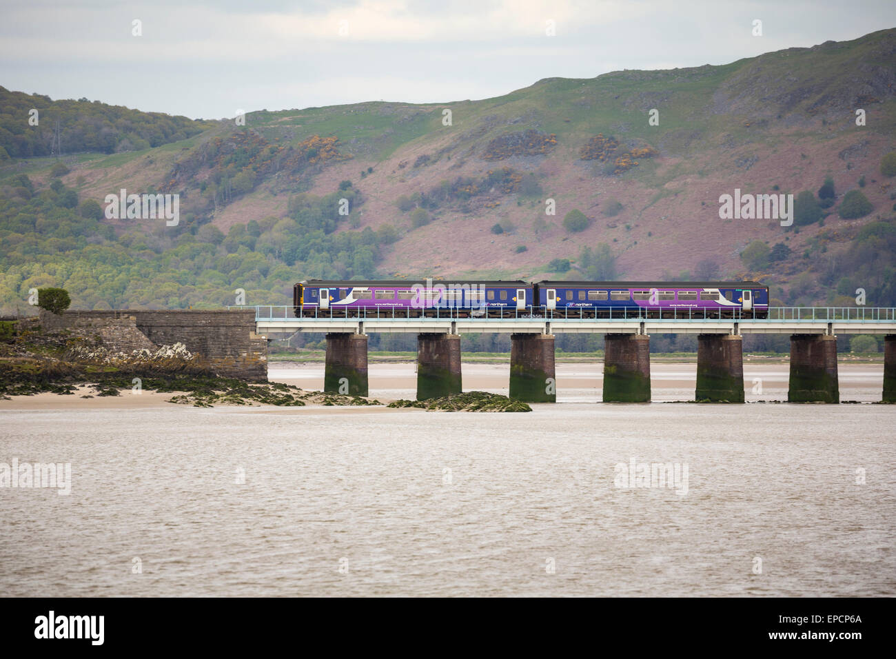 Northern Rail diesel multiple unit (DMU) on the Leven Viaduct, Cumbria - Stock Image