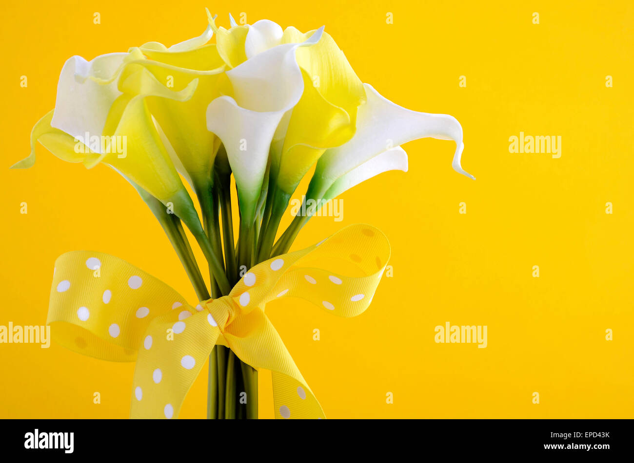 Yellow And White Theme Calla Lilly Wedding Bouquet Against Yellow