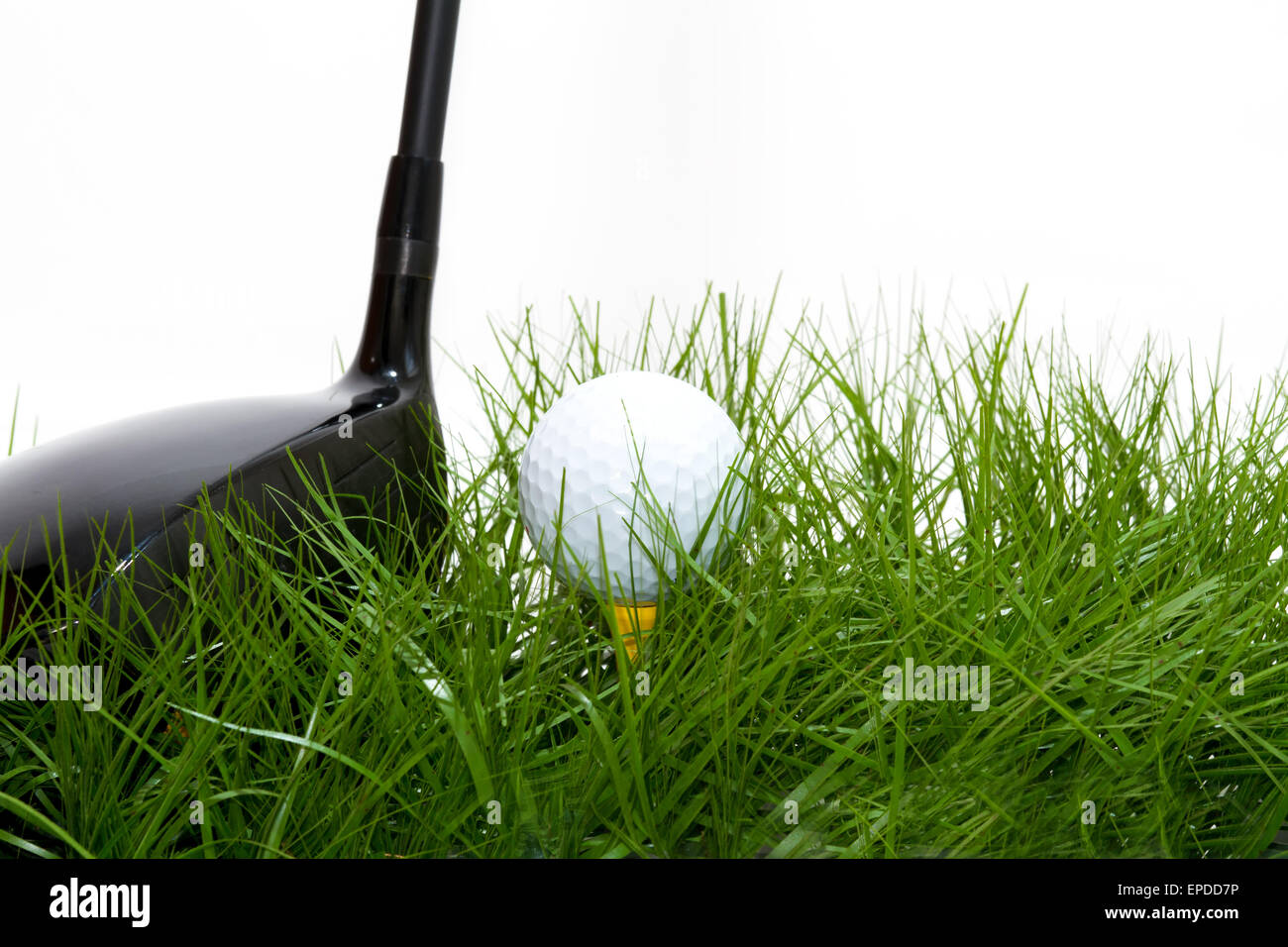 golf ball in the rough - Stock Image
