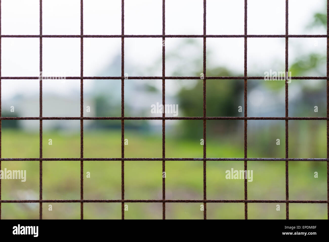A rusty wire fence forming a pattern of squares with a blurry nature background. - Stock Image