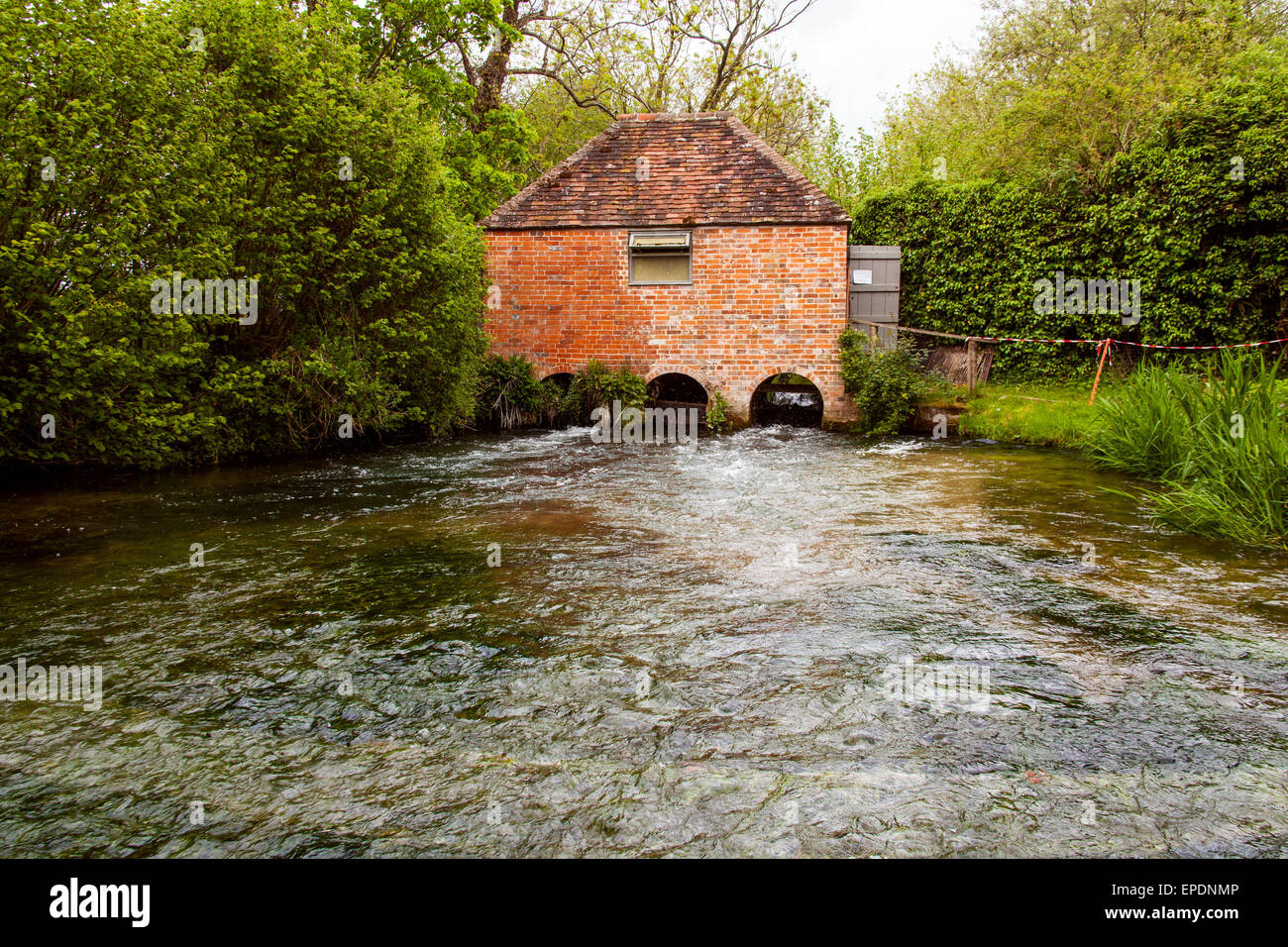 Eel House on the river Alre,  Built in the 1820s and recently restored, the eel house traps eels as the migrate - Stock Image