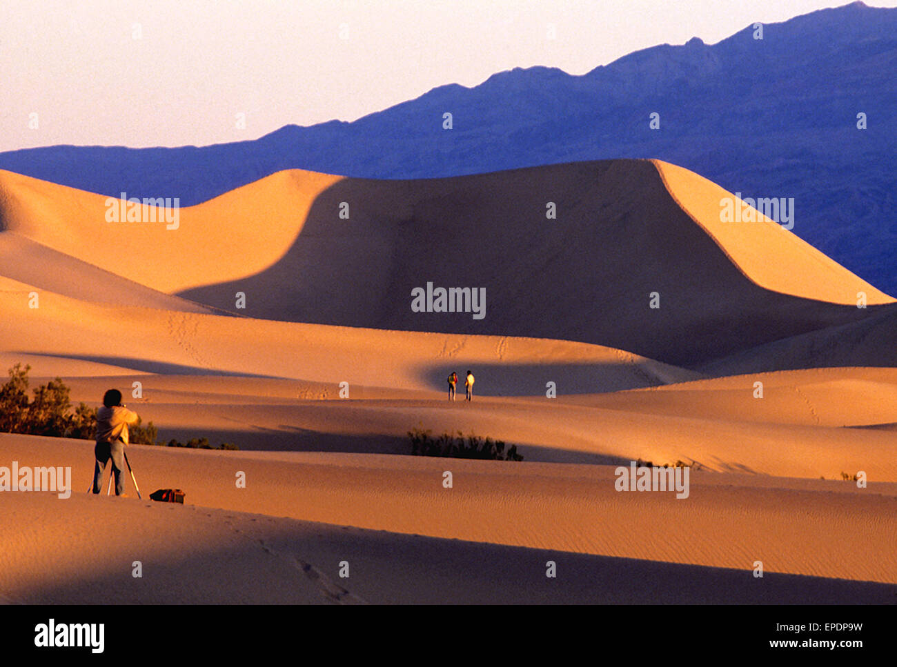 Sand Dunes in Death Valley - Stock Image