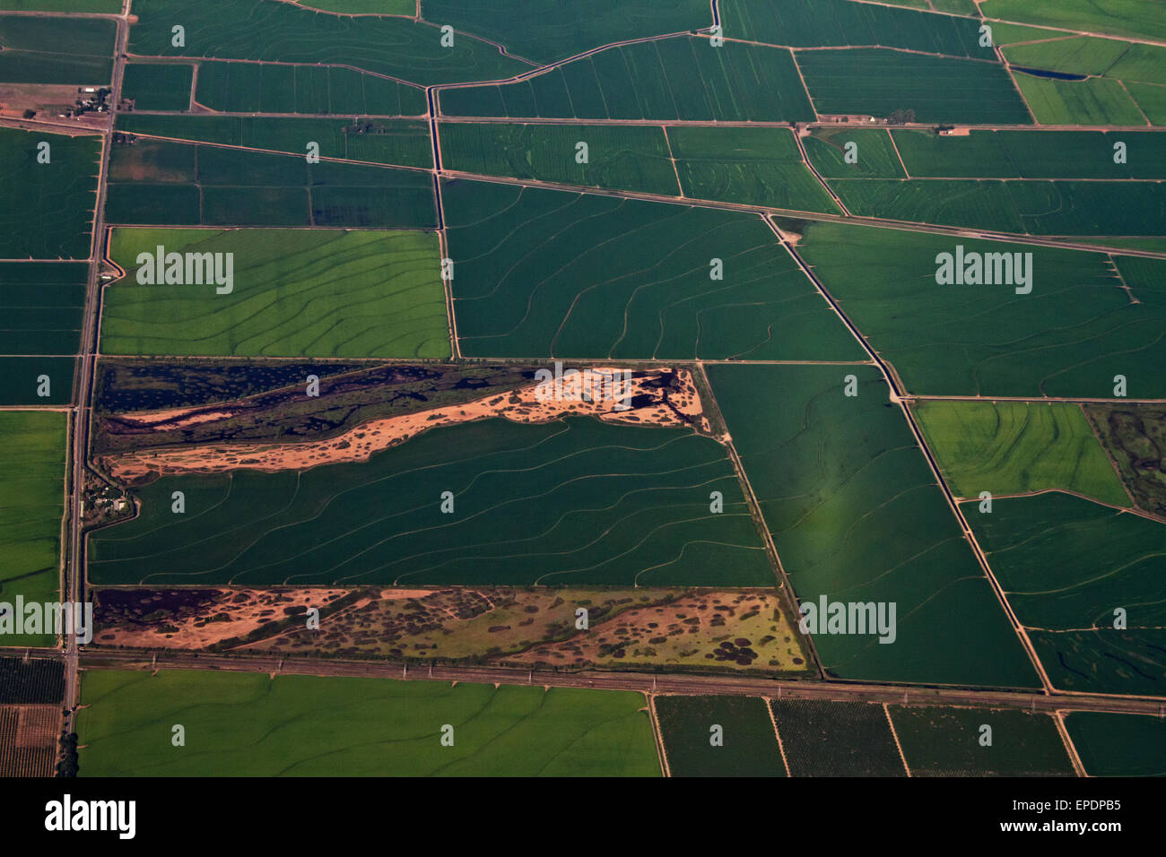 Aerial of patchwork of farms in Central Valley, Califonria - Stock Image