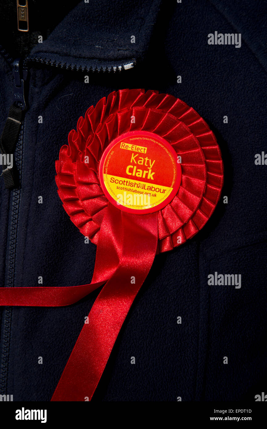 Scotland, West Kilbride. Labour party rosette...the sitting MP, Katy Clark, was defeated by the SNP candidate. - Stock Image