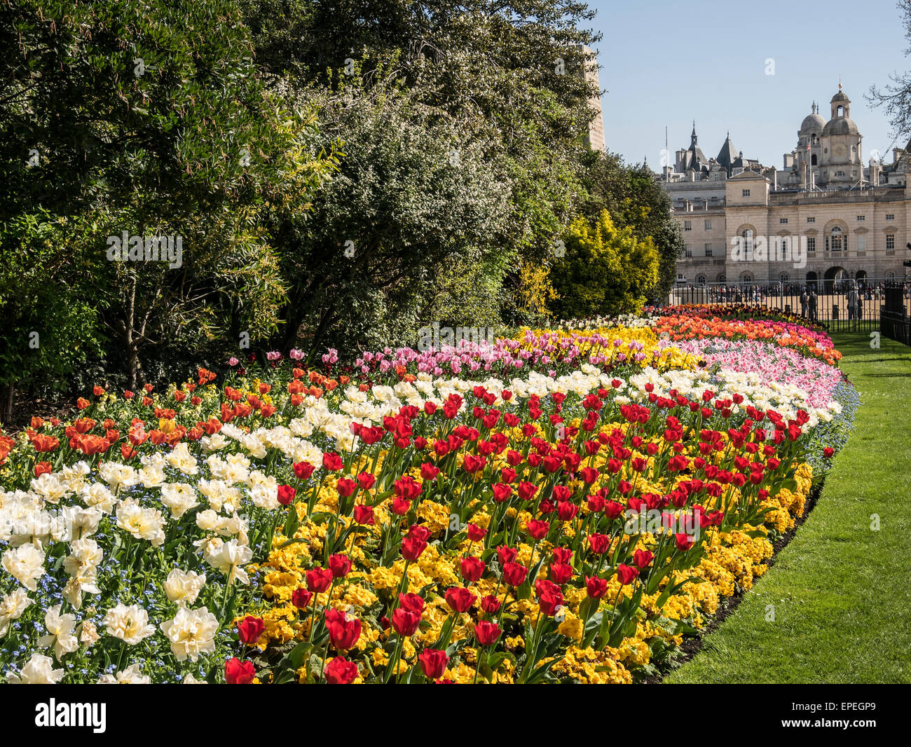 Spring Flower Display In St James Park London Uk Stock Photo