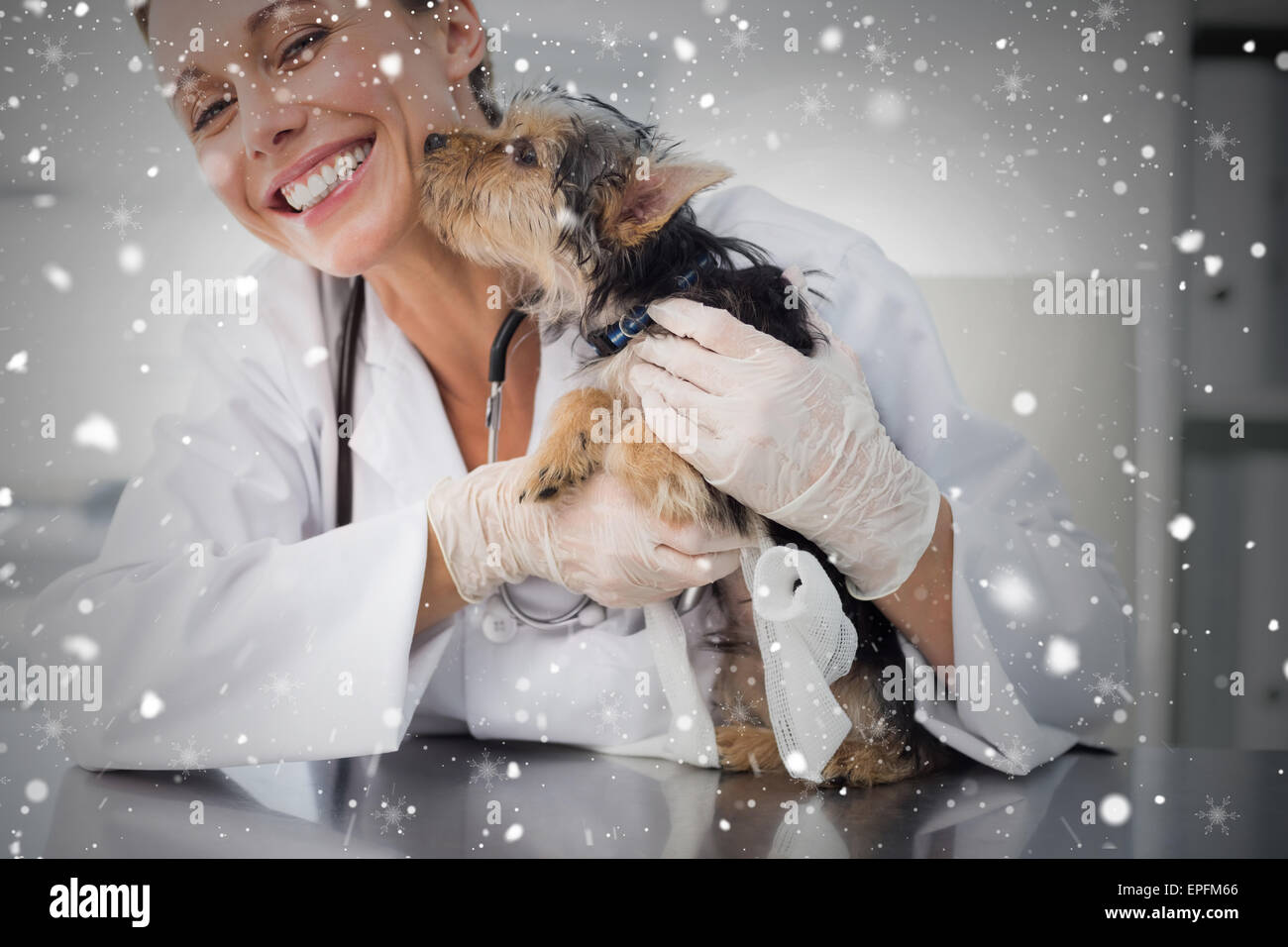 Composite image of puppy kissing female vet - Stock Image