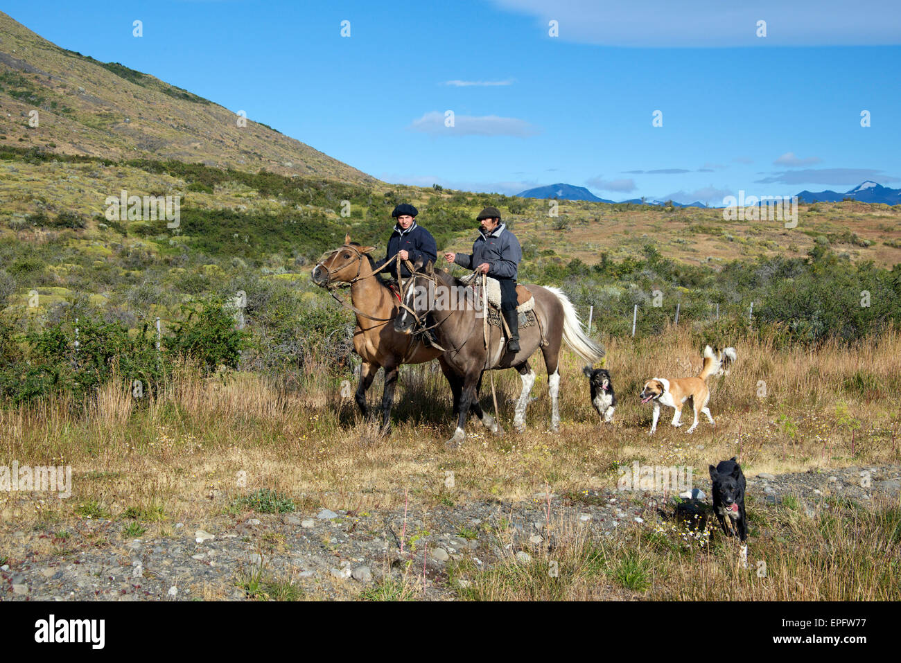 Two Gauchos on horseback with dogs Patagonia Argentina - Stock Image