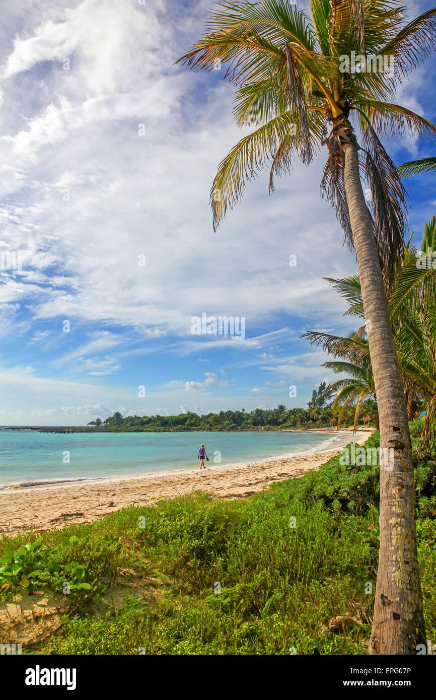 A woman walking on a deserted beach at Riviera Maya Mayan Riviera Cancun Quintana Roo Yucatan Peninsular Mexico - Stock Image