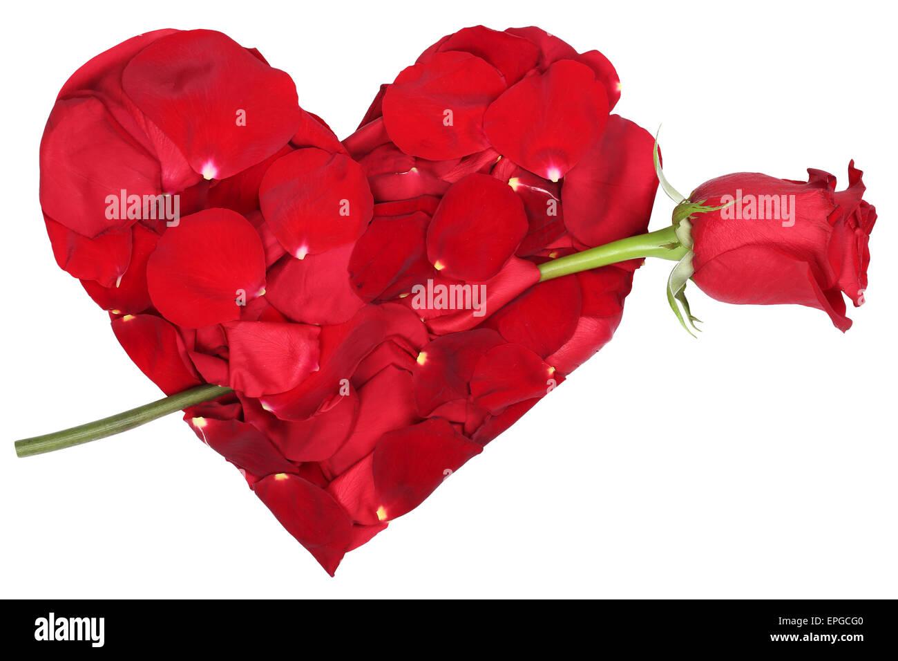 herz aus blüten mit rose thema liebe zum valentinstag oder