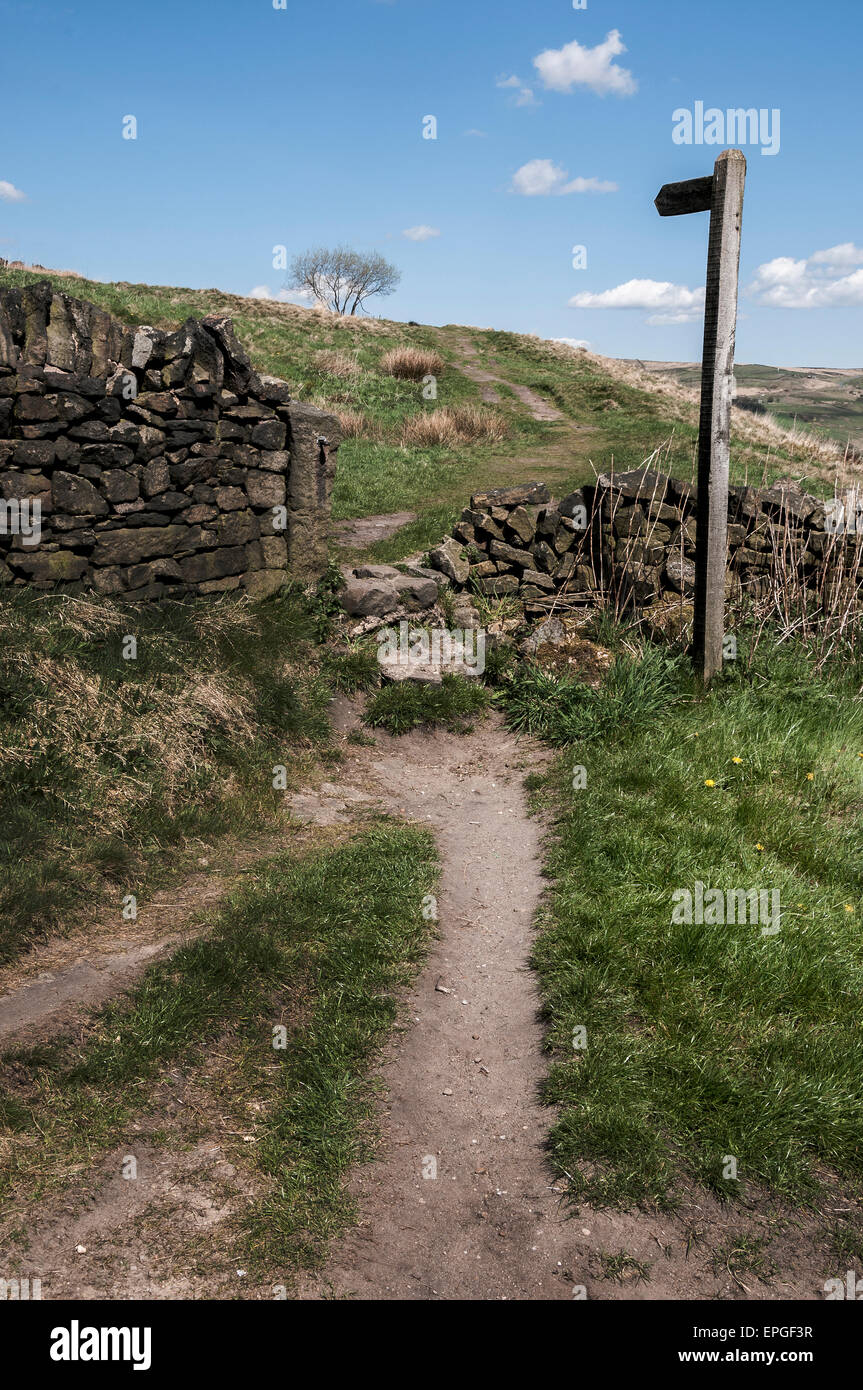 Moorland Path. - Stock Image