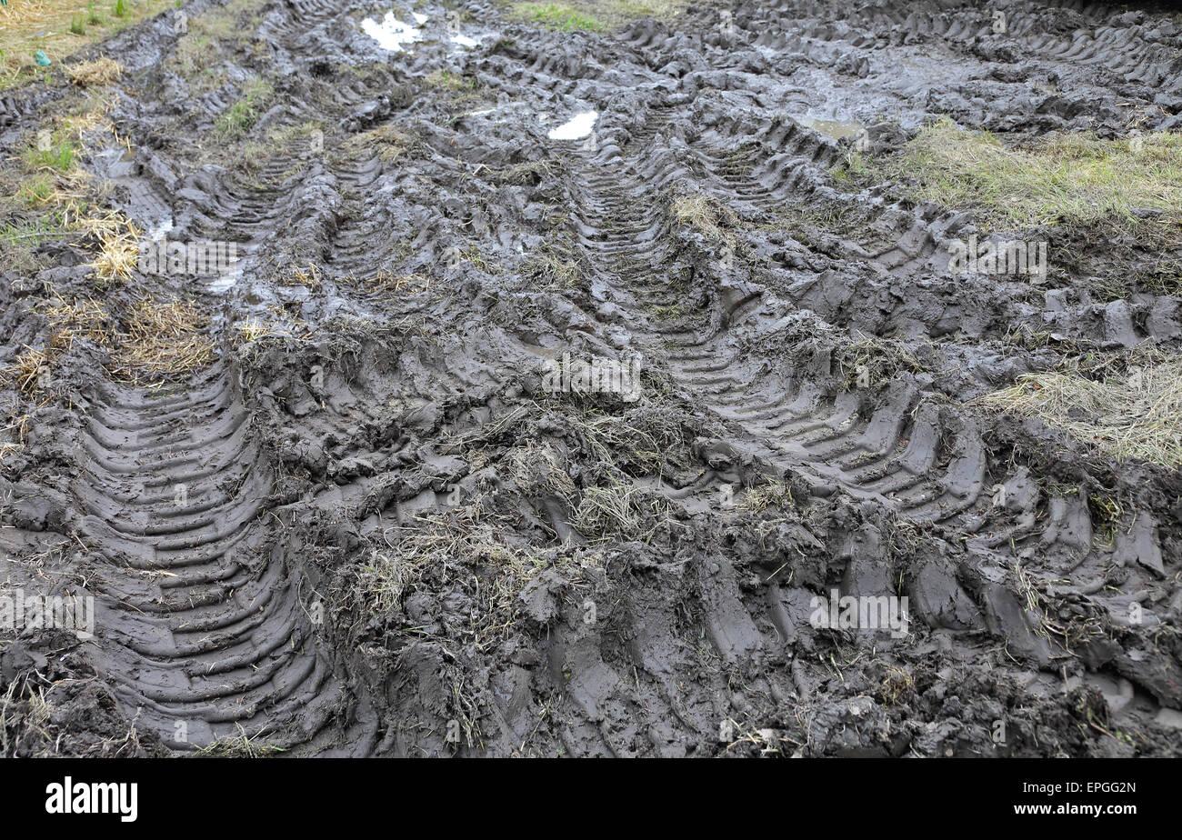 Mud - Stock Image