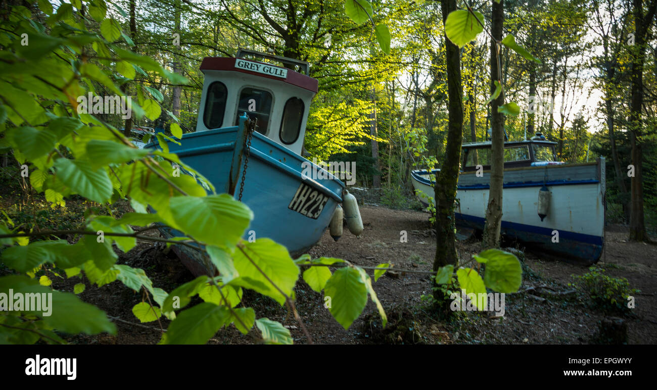 Withdrawn by Luke Jerram is an art installation in Leigh Woods to make us think about climate change and its effects. - Stock Image