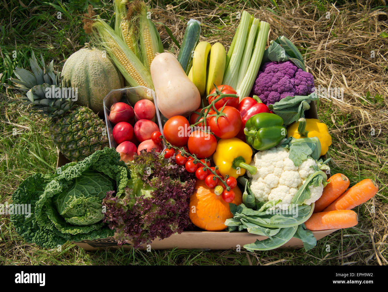 A seasonal veg box including fruit and vegetables ready to