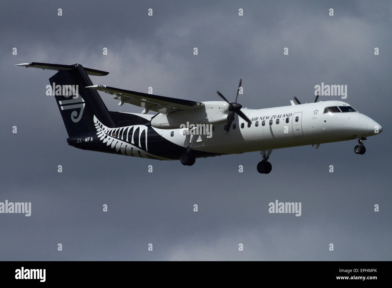 Air New Zealand Bombardier Dash 8 landing at Auckland Domestic Airport, Auckland, North Island, New Zealand - Stock Image