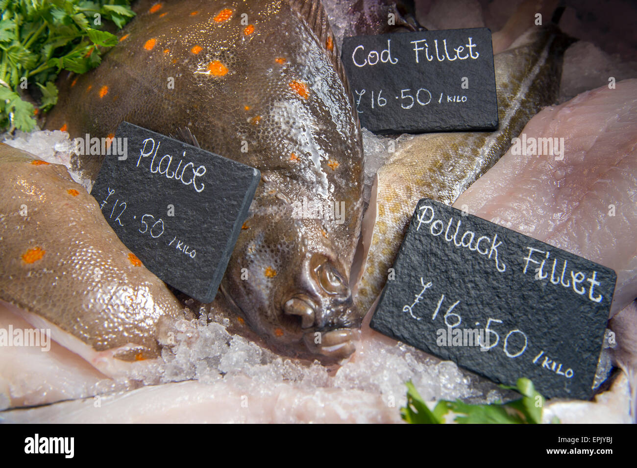 A selection of fresh fish including Plaice, Cod and Pollack in a fishmongers counter UK - Stock Image