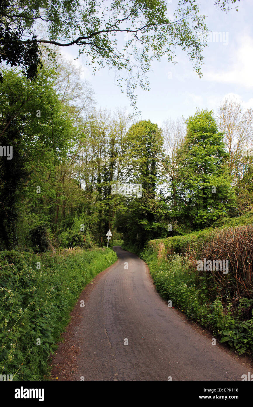 Cinderhill Lane a narrow country lane in Scholar Green, Cheshire, England - Stock Image