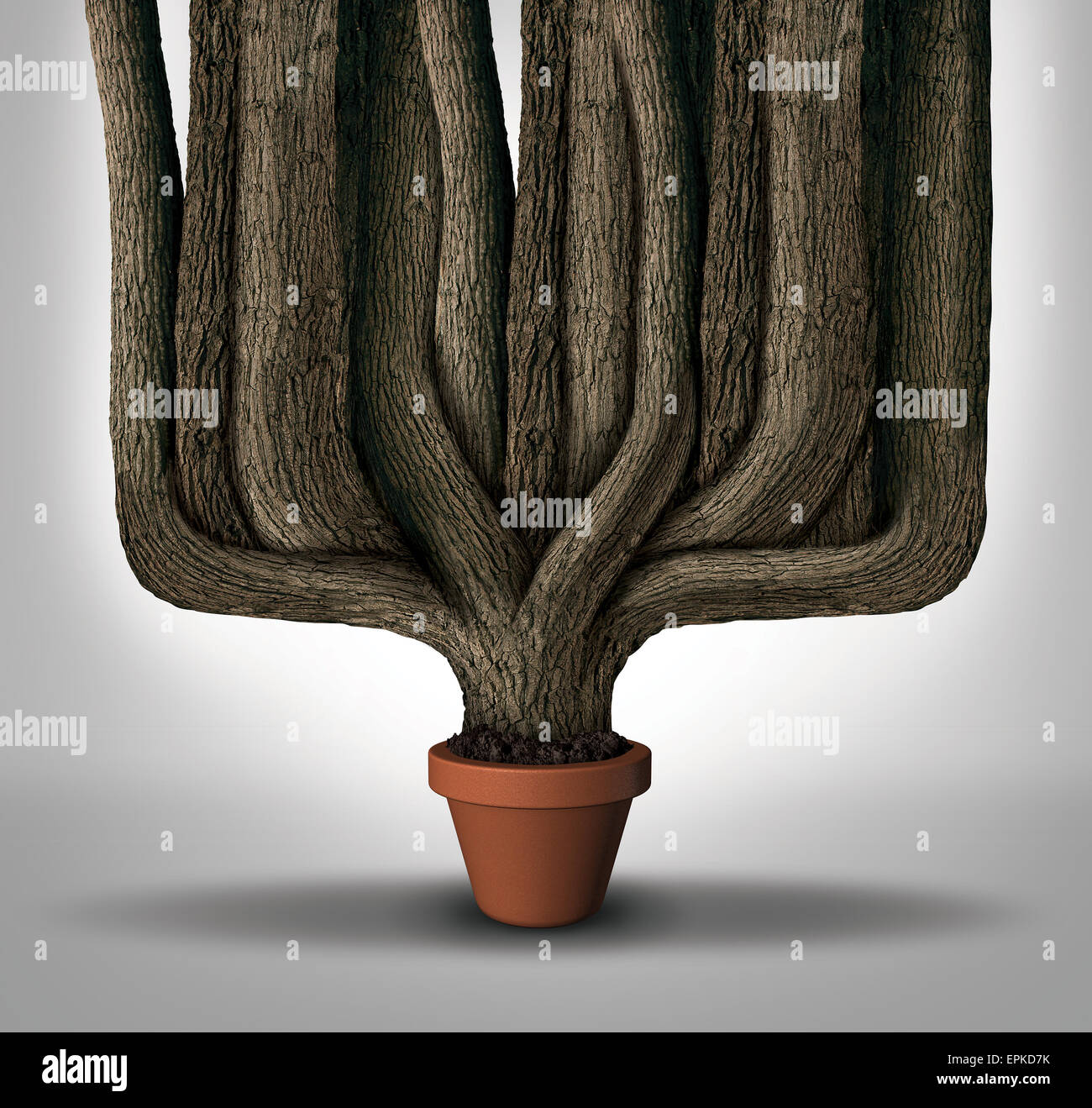 Exceed expectations business concept or maximum potential and outperform metaphor as a small flower pot with a giant - Stock Image