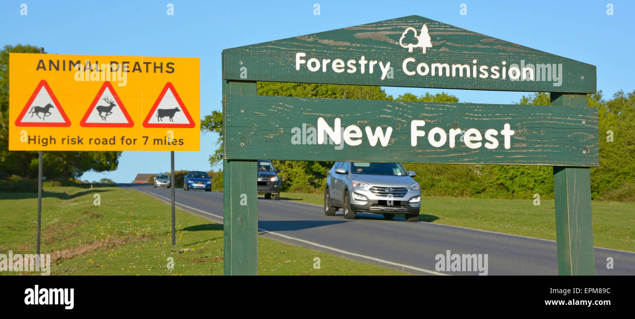 New Forest sign & road traffic sign warning motorists about high risk of accidents involving free roaming ponies - Stock Image