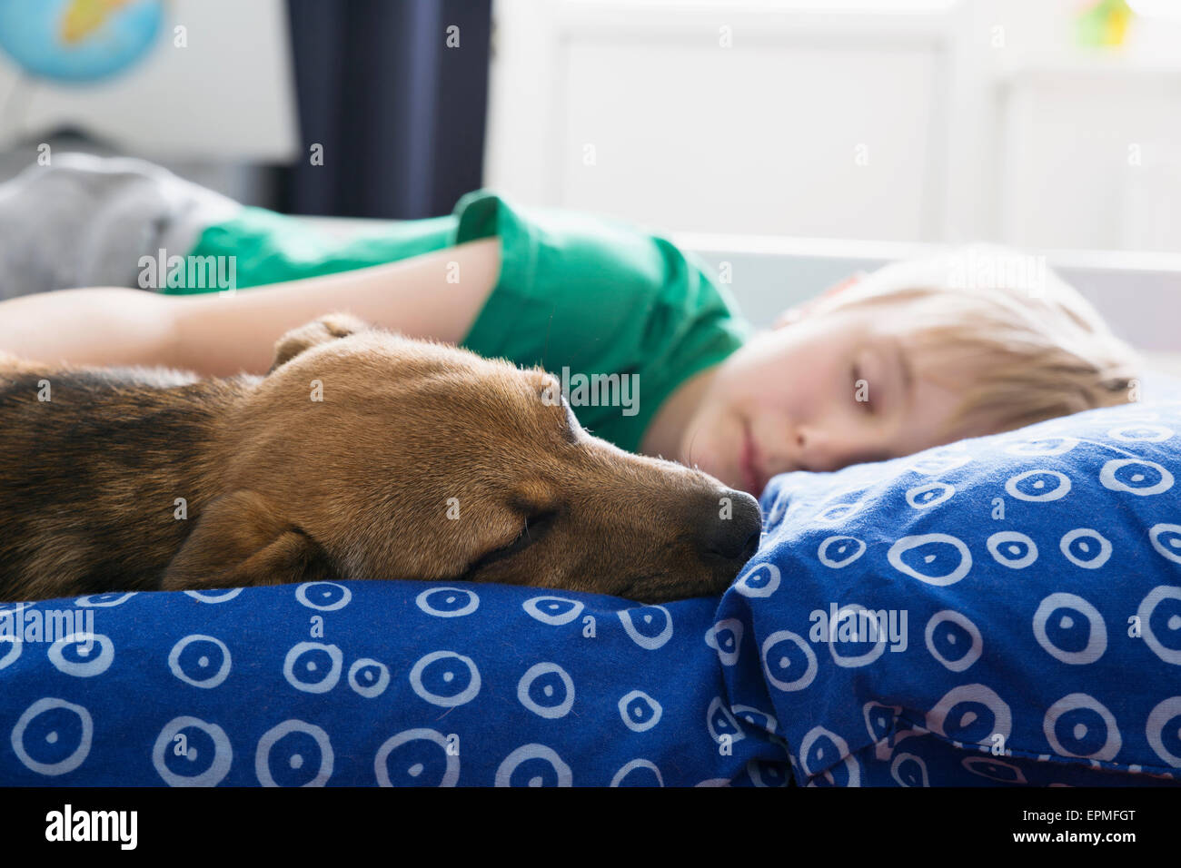 Boy and dog lying on bed - Stock Image