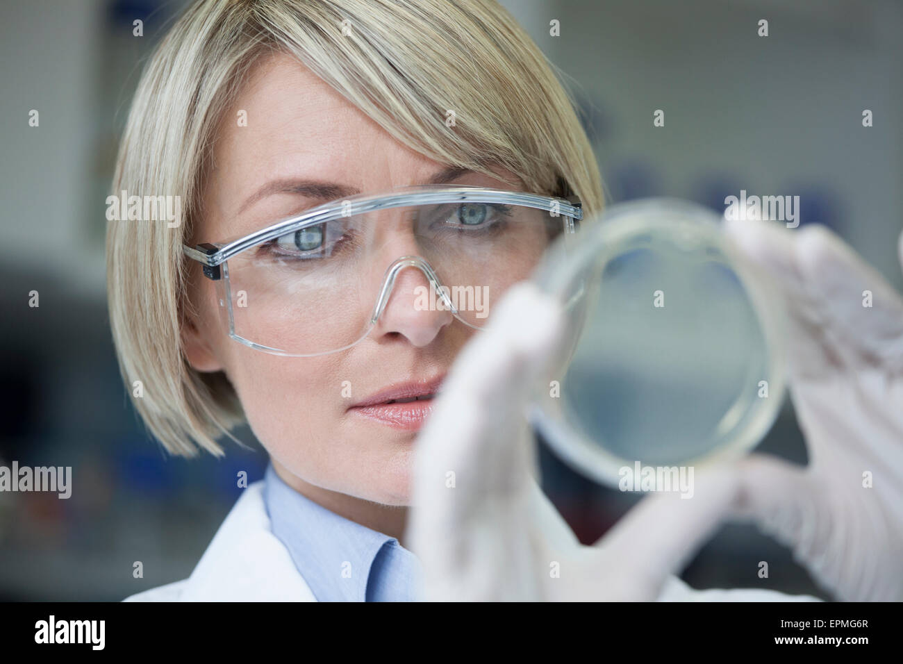 Scientist with petri dish in laboratory - Stock Image