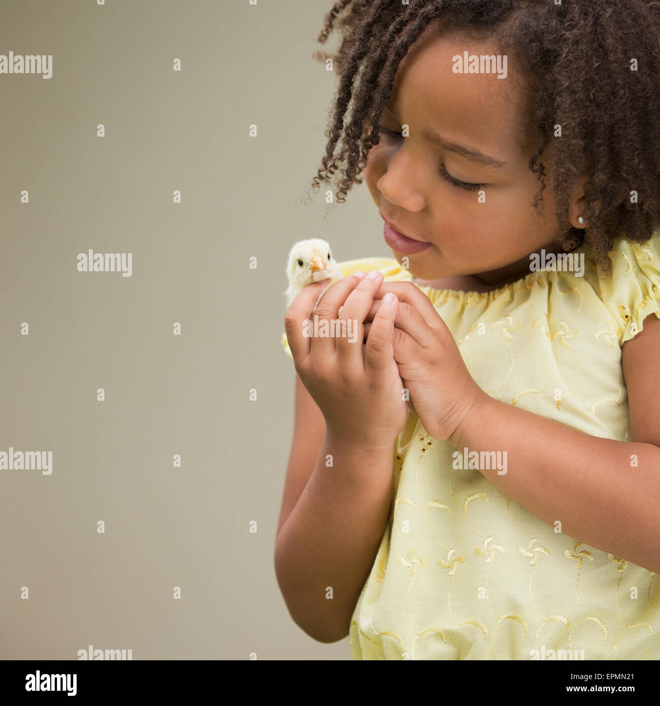A girl holding a baby chick. - Stock Image