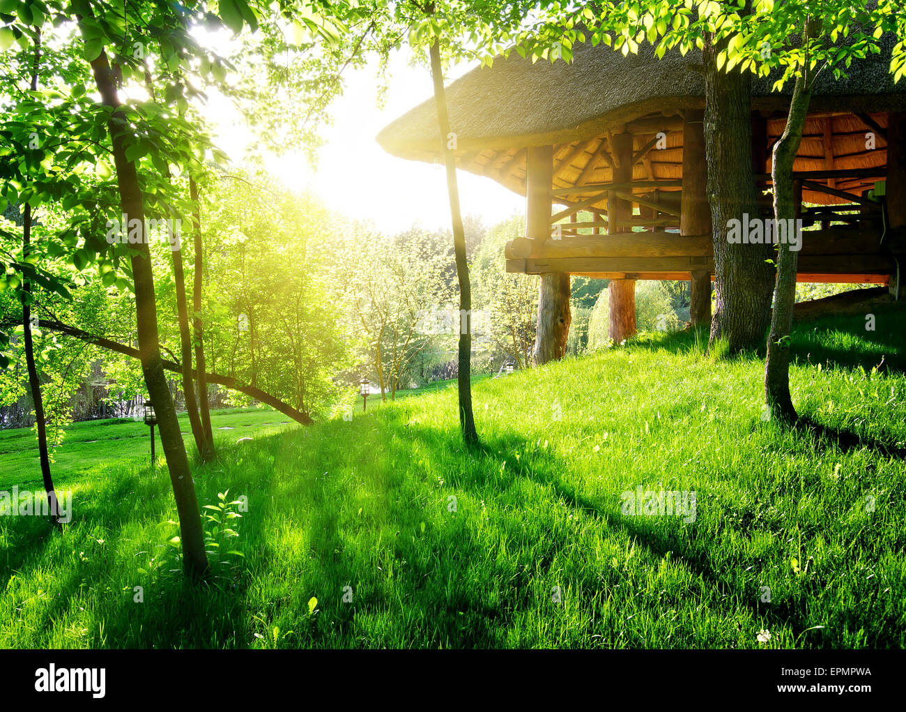Gazebo among the green trees in sunny day - Stock Image