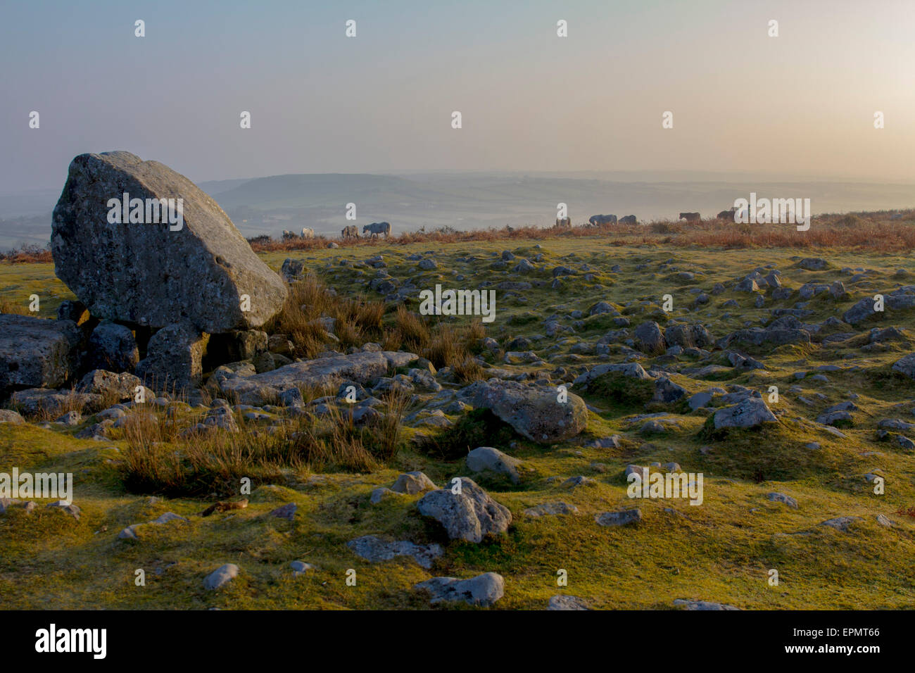 Arthur's Stone (Maen Ceti), a Neolithic burial chamber, Gower Peninsula, Swansea, Glamorgan, Wales, United Kingdom - Stock Image