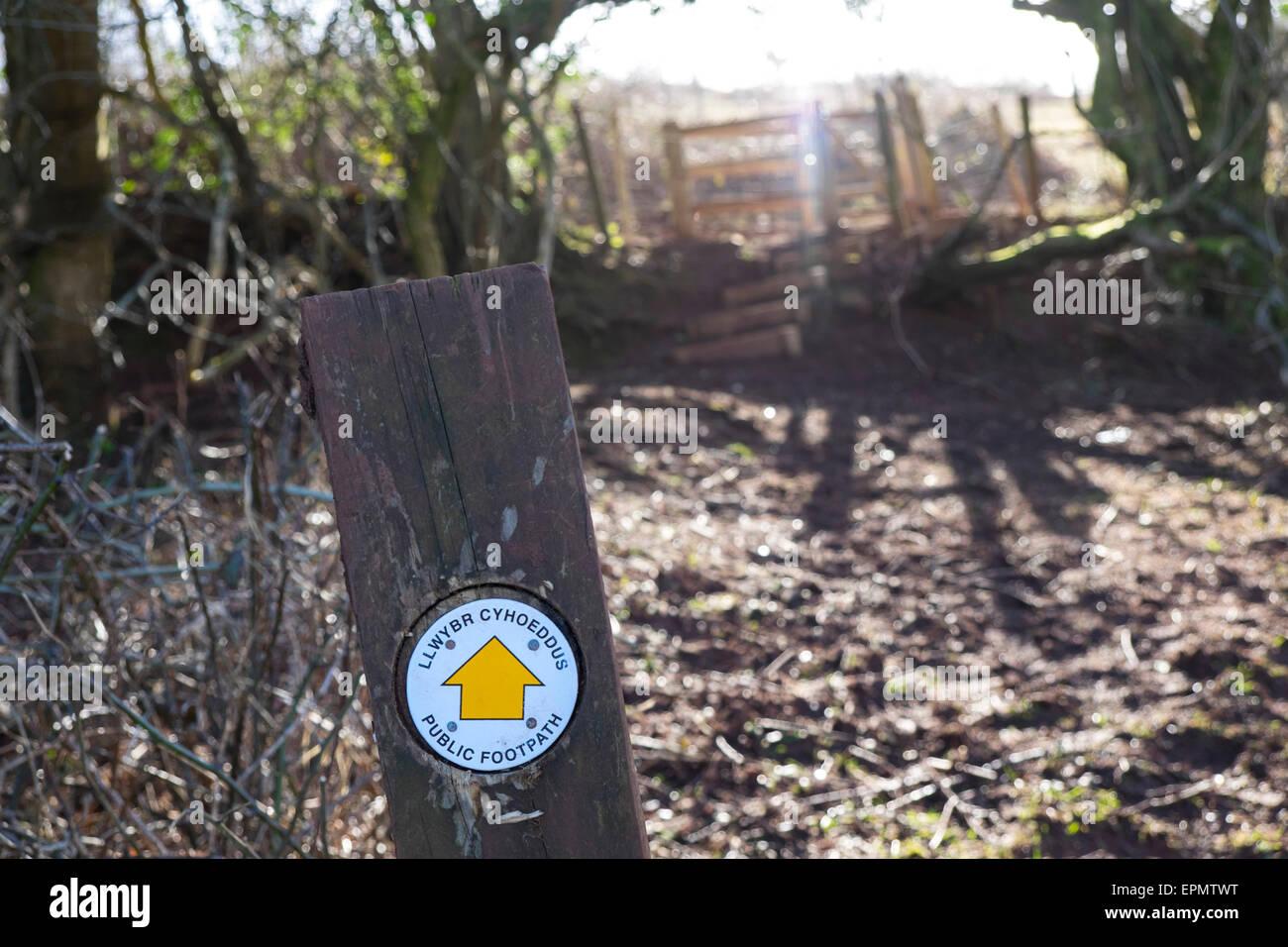 Bilingual public footpath sign on post, publc footpath, in field near Pentyrch, north Cardiff, South Glamorgan, - Stock Image