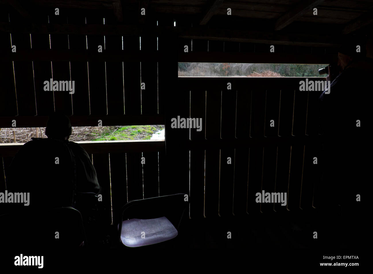 View from a wooden bird hide, Forest Farm nature reserve, North Cardiff, South Wales, UK - Stock Image