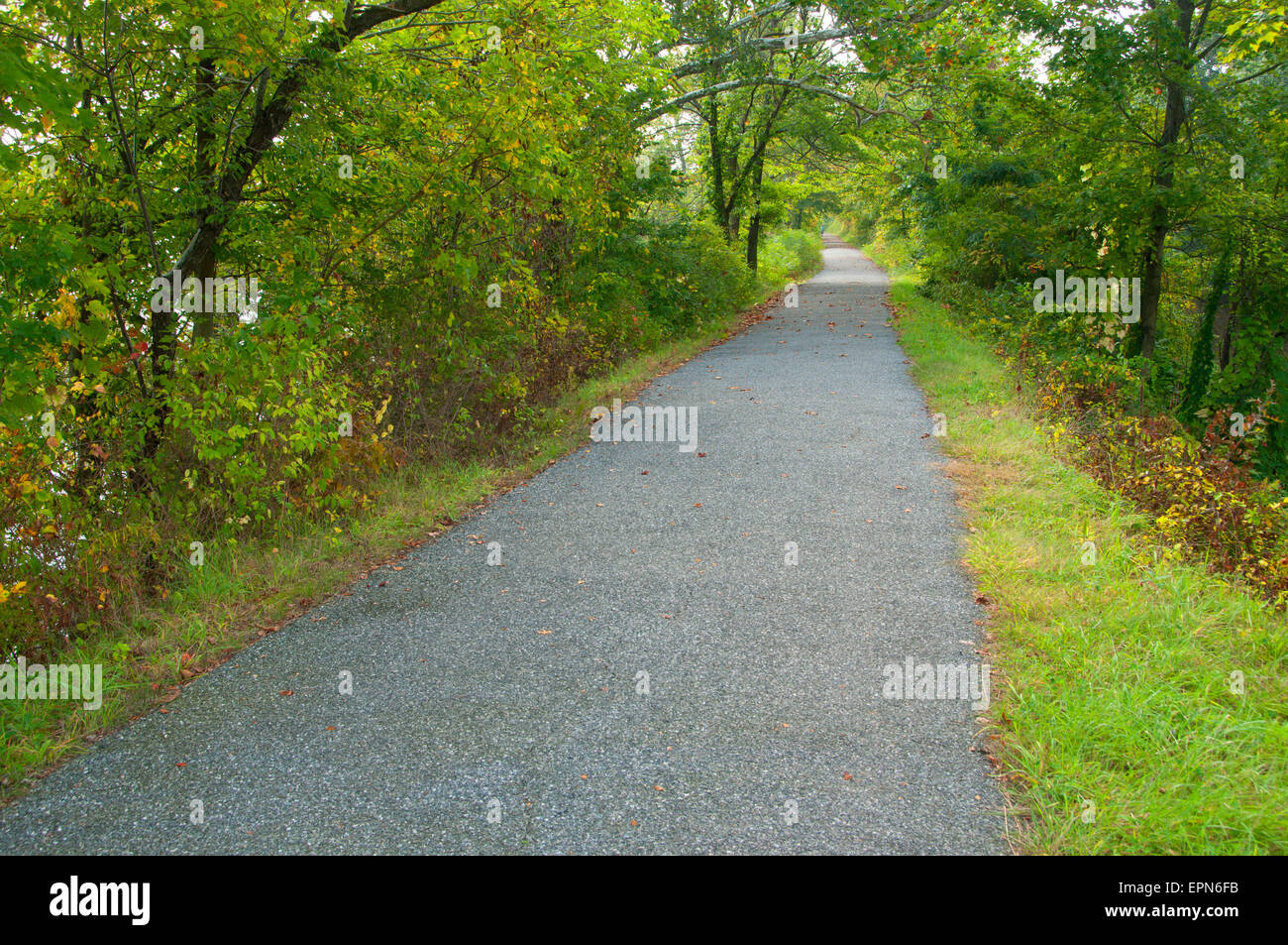Towpath trail, Windsor Locks Canal State Park Trail, Connecticut - Stock Image