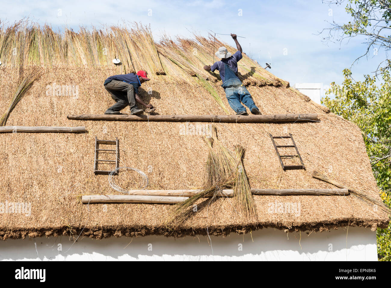 Thatching Stock Photos Amp Thatching Stock Images Alamy
