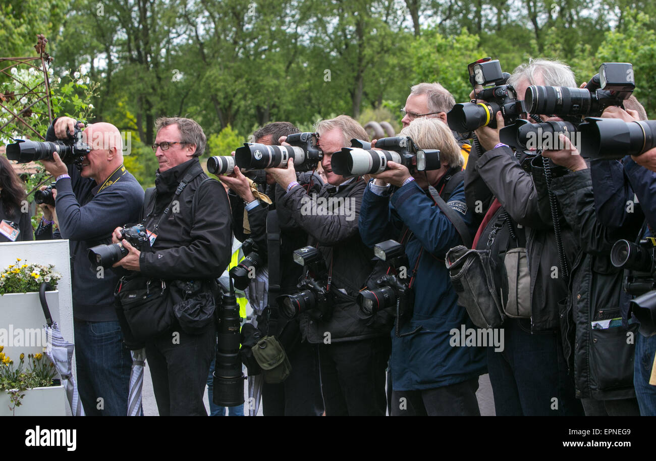 Press photographers at the RHS Chelsea Flower Show 2015 Stock Photo