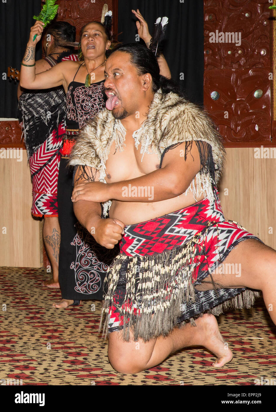 Maori tribal dancers performing at Te Puia near Rotorua in New Zealand's North Island - Stock Image