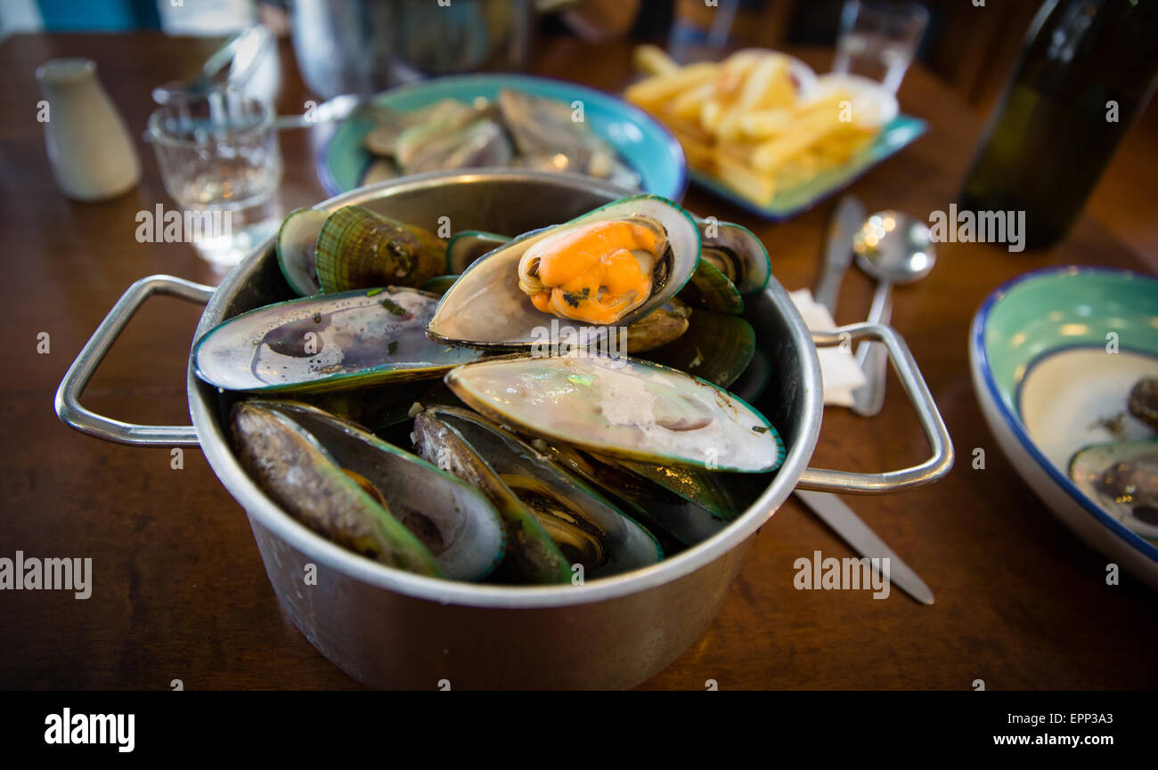 A pot of green lipped mussels in a New Zealand restaurant - Stock Image