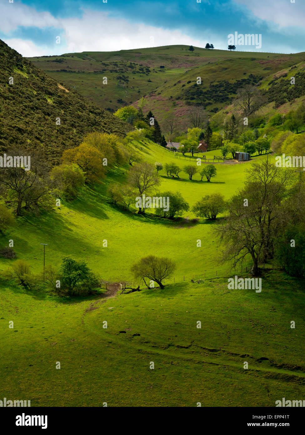 Batch Valley on the Long Mynd near Church Stretton in the Shropshire Hills England UK - Stock Image