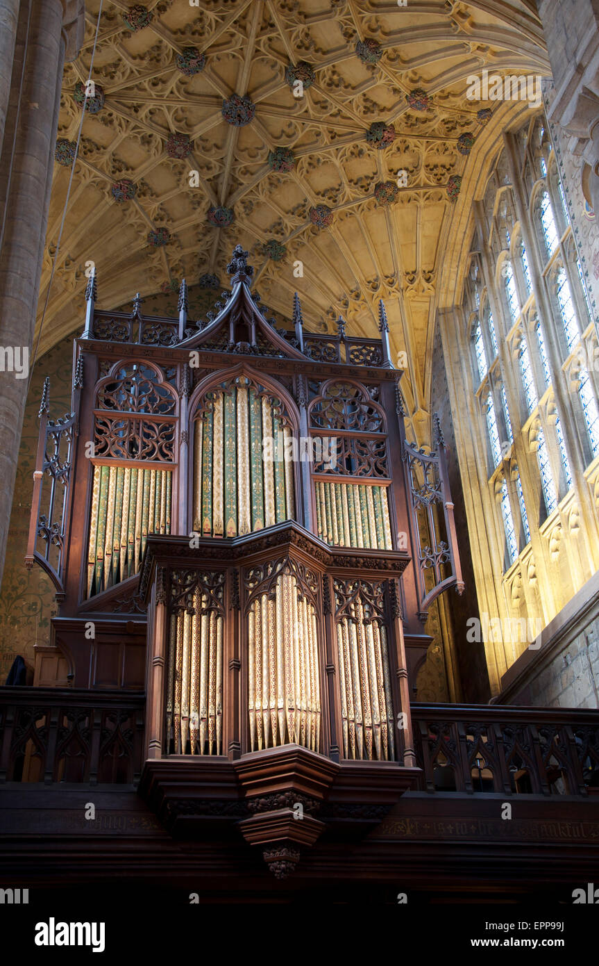 Church architecture. The ornate Victorian organ pipes, and part of the magnificent historic vaulted ceiling of Sherborne - Stock Image