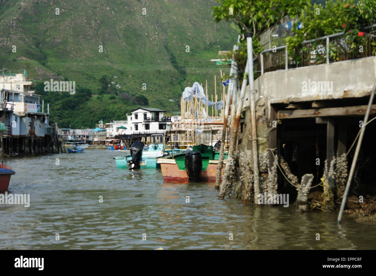 Tai O, Lantau Island, Hong Kong - Stock Image