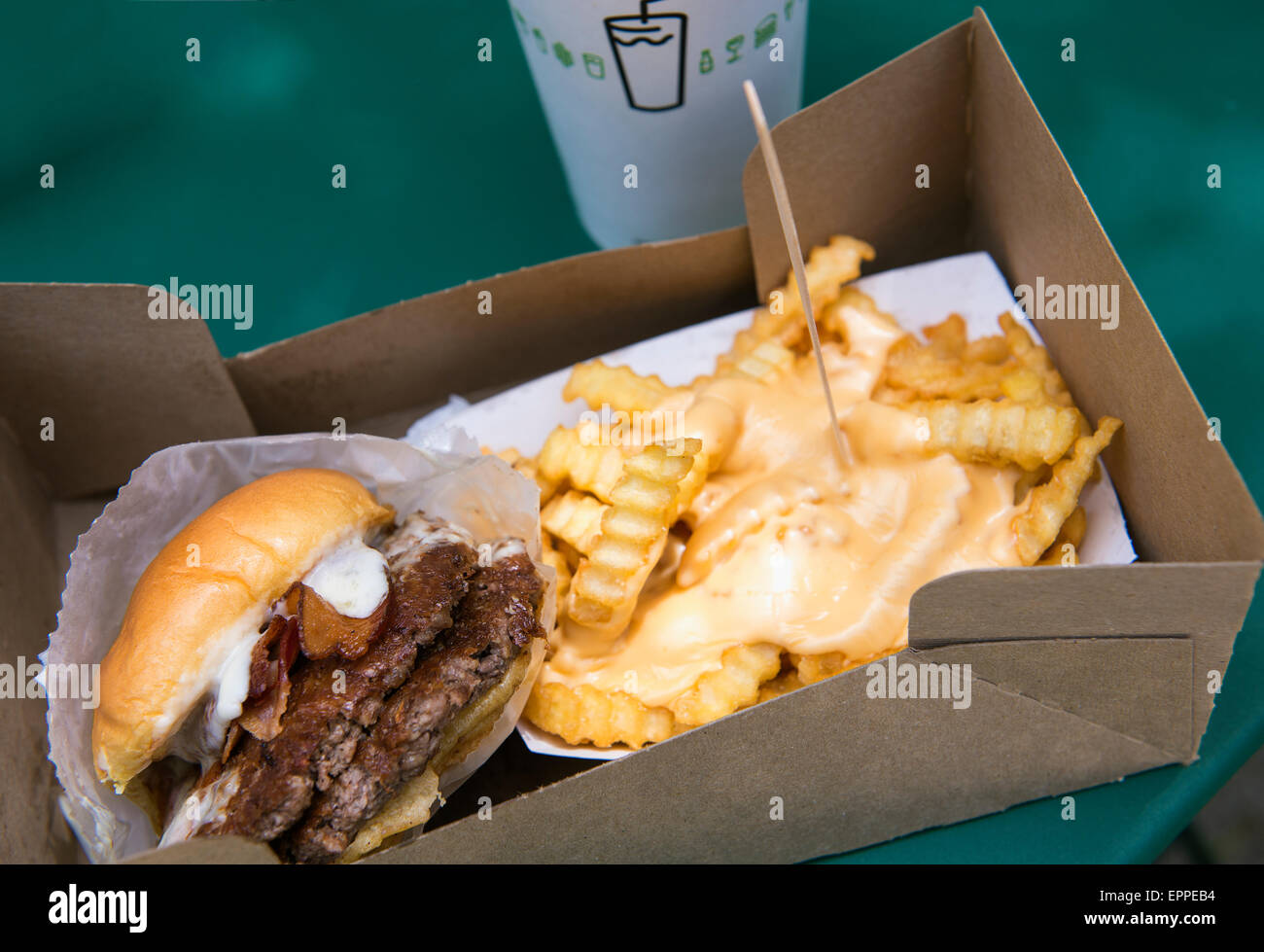 The Park burger at the grand re-opening of Shake Shack in Madison Square Park, with cheese fries. May 20th, 2015. - Stock Image